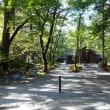 軽井沢のいろいろ 軽井沢の木漏れ日(こもれび) ・・・