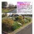 散策 「東京南東部-262」  東京海洋大学