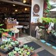 夏の休養 三日目 軽井沢の定番イタリアン プリモ へ ・・・ lunch at Primo