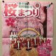 桜祭りもうすぐー!