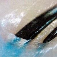 これは便利、頭皮の歯ブラシ スカルプブラシ