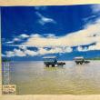 竹富島、西表島、由布島