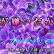 ♬・愛が嫌いだから /チェウニ//kazu宮本