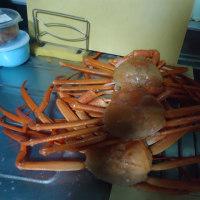 蟹を食べる
