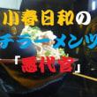 小春日和にプチツー チョイとそこまで、 江戸川べりでお昼寝&悪代官で唐揚げラーメンツー ^^! ブログ&動画