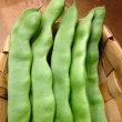 日替りマルシェ「沖縄の元気な野菜」♪