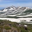 初夏の白雲岳3 高根ヶ原から山頂へ