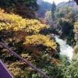 2017/11/05 自転車週間 最終日 山中温泉ツーリングだ!