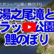 湯之尾滝とガラッパ公園と鯉のぼり・・・鹿児島の風景