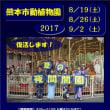 熊本市動植物園の夜間開園2017