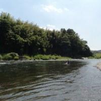 鮎釣り、那珂川へ行って来ました!