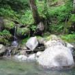 新潟なんだけど、信濃川源流遡行は難所の連続だった。
