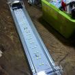 中古GEX45cm LEDライト パワー3