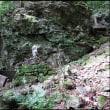 両神山 #1