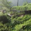イノシシ被害で畑も縮小