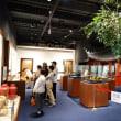 茶の都ミュージアム④