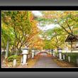 丹波・高山寺の紅葉