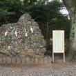 静岡、愛知神社巡り