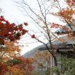 箱根(鉄橋・美術館)