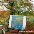高知県 Photo Trip ~モネの庭編~