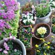 雨ふりに花を買う