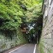 坂の上(桜坂)にて
