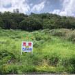 沖縄バカンス備忘録 南国のさわやかな風