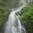 「白滝」(栃木県)