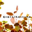 菊の香や夫と見送る子の門出