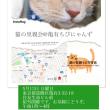 5月13日  猫の里親会のお知らせ