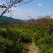 比丘尼の丘へ行きました。(9月19日)(その2)