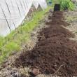 ニンニクの畝作りの下準備