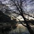 暮れなずむ池に漂う冬の色