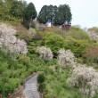 京都大原野の名刹・「善峯寺」へ