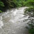 濁流の木曽川を見る