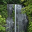 3536 かっぱ滝