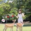 春日大社ご創建1250年奉祝行事、本日スタート!(2018 Topic)