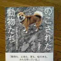のこされた動物たち 福島第一原発20キロ圏内の記録・・・太田康介