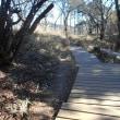 高尾山の周辺を歩く