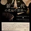化石採集の極意、とある方の場合〜2018.12.16岐阜県博物館〜