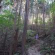 マッキーの山登り:秋の陣馬山で山歩き