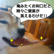 2018 10/20★今日は7わんです~★