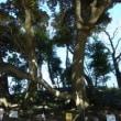 井沼方公園