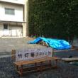 竹灯篭プロジェクト開始!