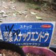 エンドウ種まきと軟弱野菜種まき