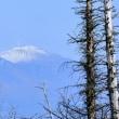 浅間山:美ヶ原高原から