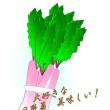 大好きな日野菜がきました。