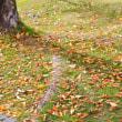 紅葉の諏訪湖畔