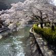 京都市山科区 桜の名所疏水公園周辺 店舗付き住宅売り情報