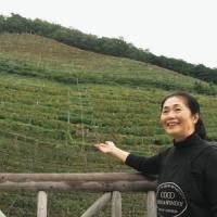障害者がつくる「最高のワイン」 足利「ココ・ファーム・ワイナリー」あす・あさって収穫祭